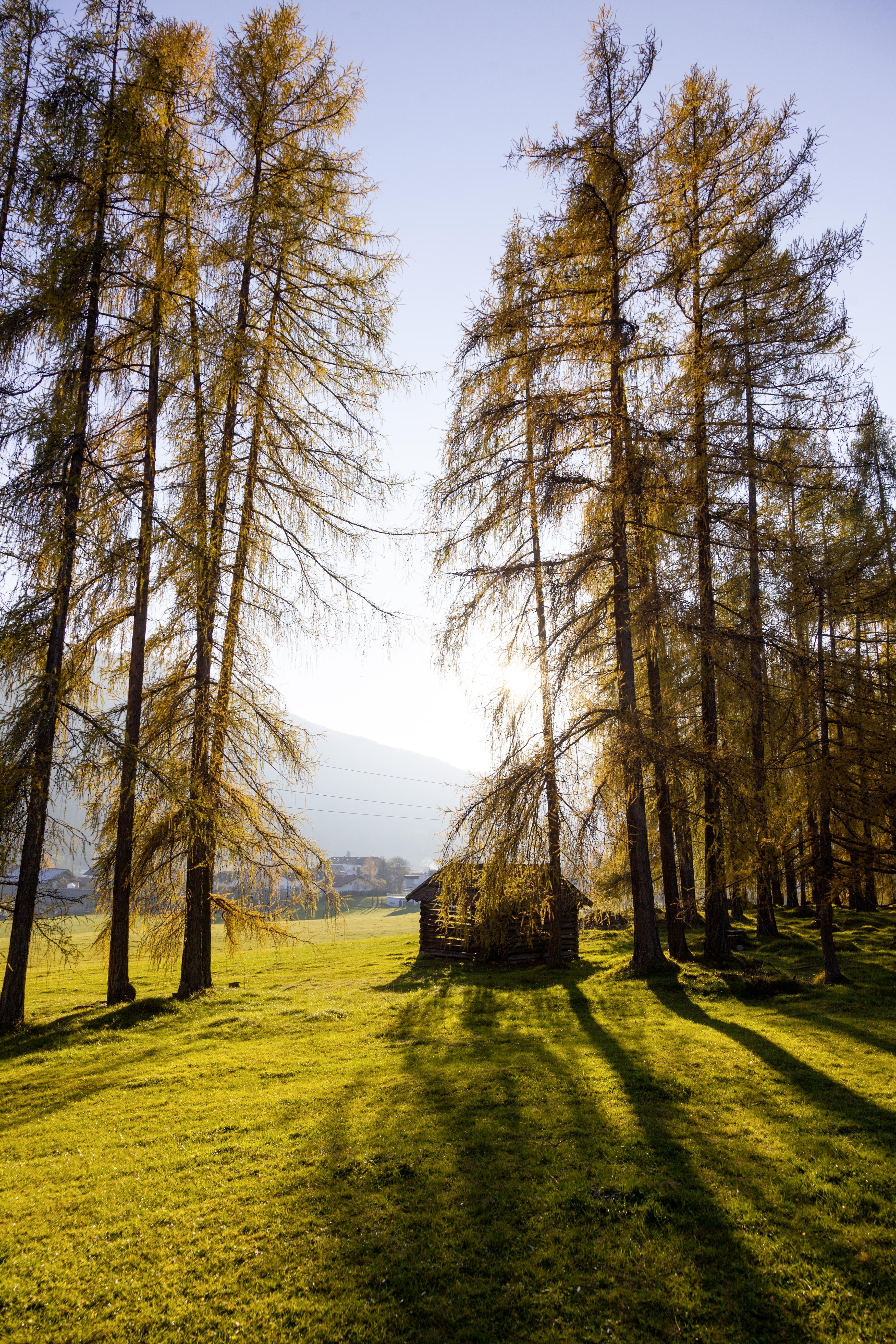 Innsbruck: Herbstliche Wanderziele ohne Auto erreichen